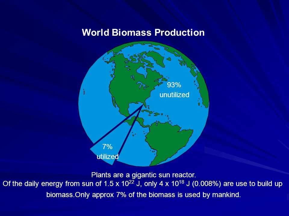 The build up biomass is about 1000 times bigger than the amount of plastics produced world wide.