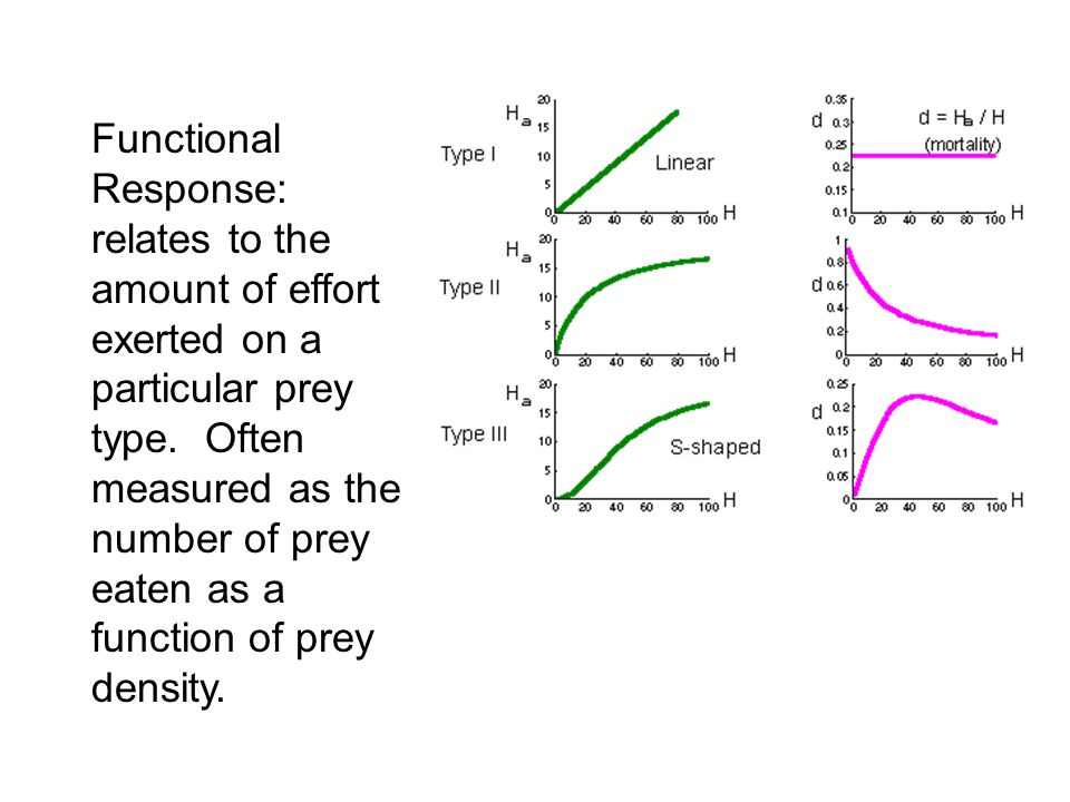 Functional Response: relates to the amount of effort exerted on a particular prey type.