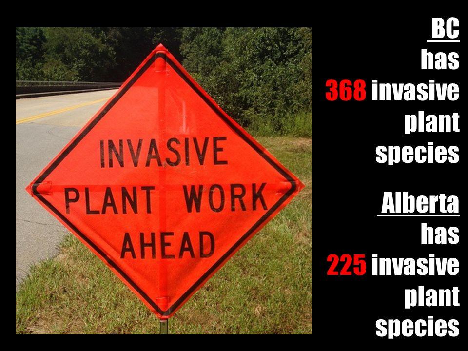 BC has 368 invasive plant species Alberta has 225 invasive plant species