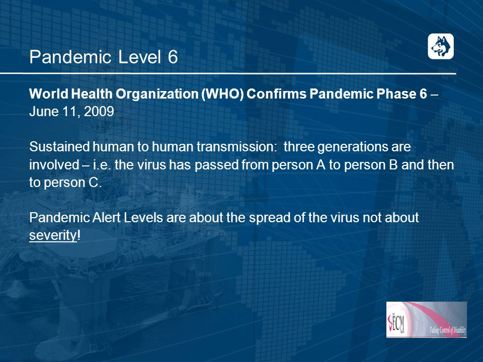 Pandemic Level 6 World Health Organization (WHO) Confirms Pandemic Phase 6 – June 11, 2009 Sustained human to human transmission: three generations are involved – i.e.