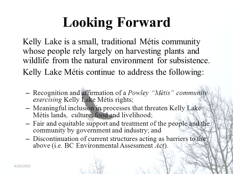 Looking Forward Kelly Lake is a small, traditional Métis community whose people rely largely on harvesting plants and wildlife from the natural enviro