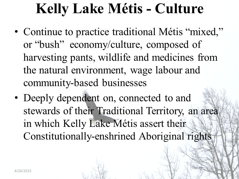 Kelly Lake Métis - Culture Continue to practice traditional Métis mixed, or bush economy/culture, composed of harvesting pants, wildlife and medicines from the natural environment, wage labour and community-based businesses Deeply dependent on, connected to and stewards of their Traditional Territory, an area in which Kelly Lake Métis assert their Constitutionally-enshrined Aboriginal rights 4/26/2015