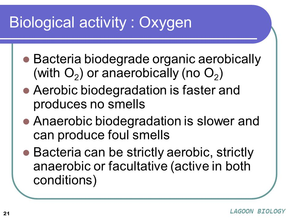 21 Biological activity : Oxygen Bacteria biodegrade organic aerobically (with O 2 ) or anaerobically (no O 2 ) Aerobic biodegradation is faster and produces no smells Anaerobic biodegradation is slower and can produce foul smells Bacteria can be strictly aerobic, strictly anaerobic or facultative (active in both conditions) LAGOON BIOLOGY