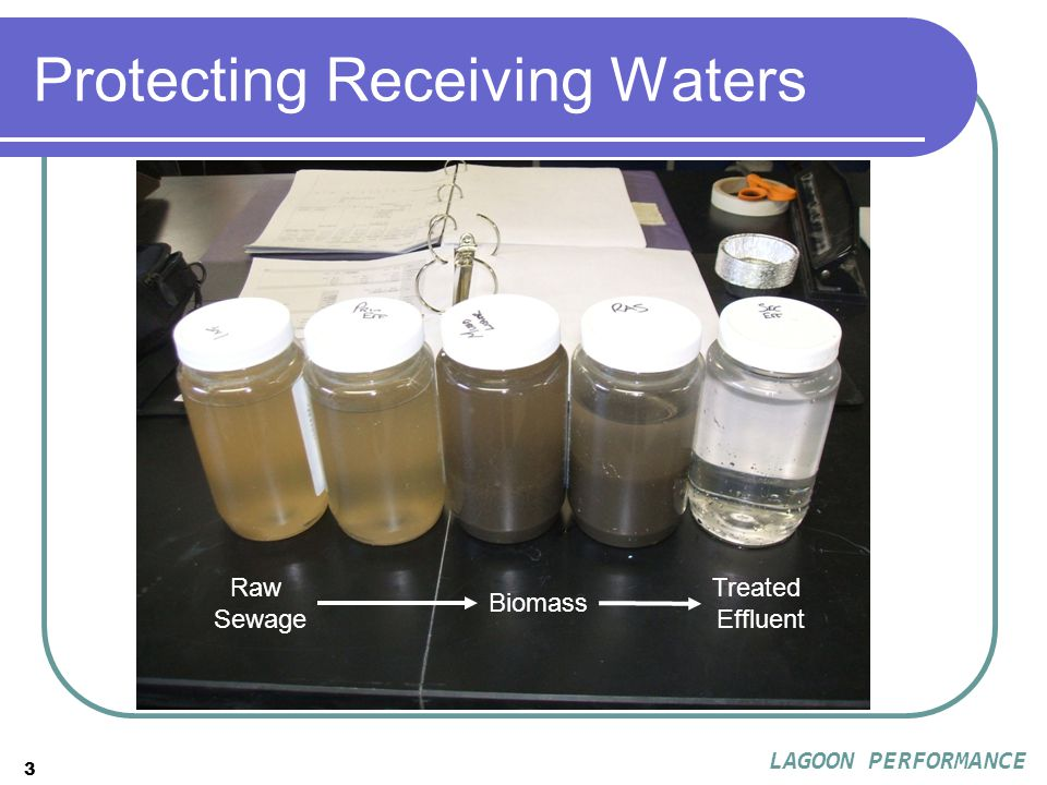 3 Protecting Receiving Waters Raw Sewage Treated Effluent Biomass LAGOON PERFORMANCE