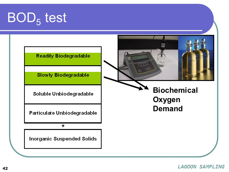 42 BOD 5 test Biochemical Oxygen Demand LAGOON SAMPLING