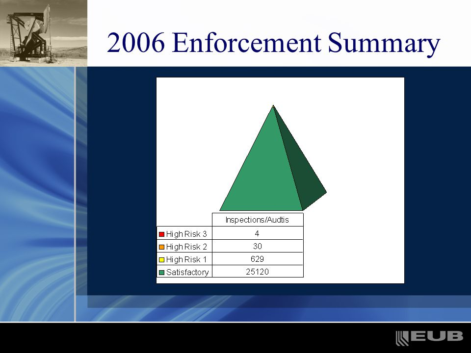 2006 Enforcement Summary