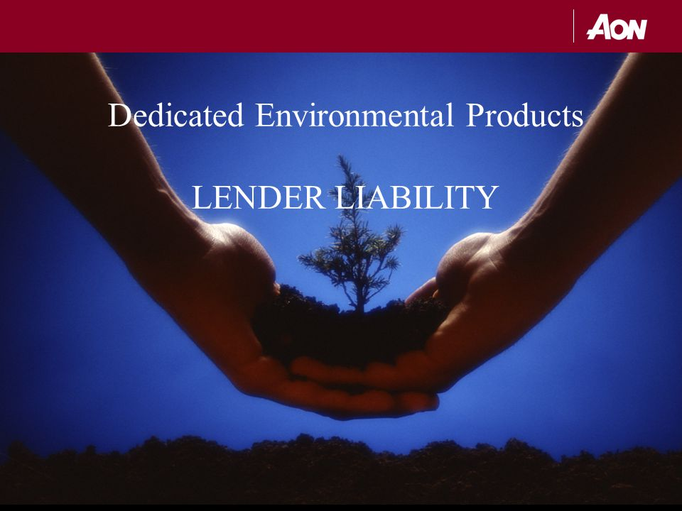 Dedicated Environmental Products LENDER LIABILITY
