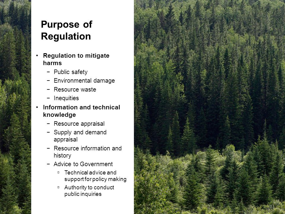Purpose of Regulation Regulation to mitigate harms −Public safety −Environmental damage −Resource waste −Inequities Information and technical knowledge −Resource appraisal −Supply and demand appraisal −Resource information and history −Advice to Government  Technical advice and support for policy making  Authority to conduct public inquiries