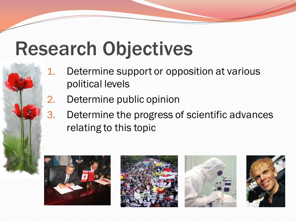 Research Objectives 1. Determine support or opposition at various political levels 2.