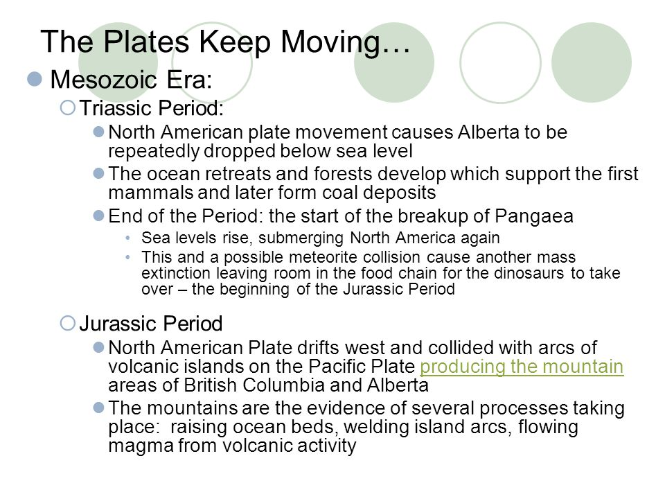 The Plates Keep Moving… Mesozoic Era:  Triassic Period: North American plate movement causes Alberta to be repeatedly dropped below sea level The oce