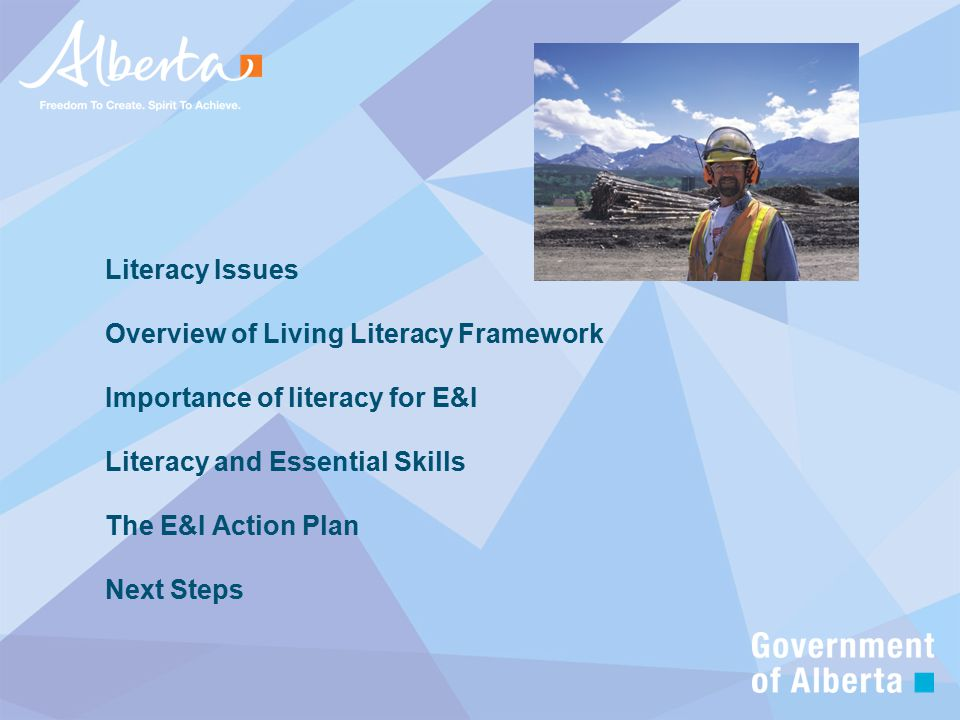 Literacy Issues Overview of Living Literacy Framework Importance of literacy for E&I Literacy and Essential Skills The E&I Action Plan Next Steps