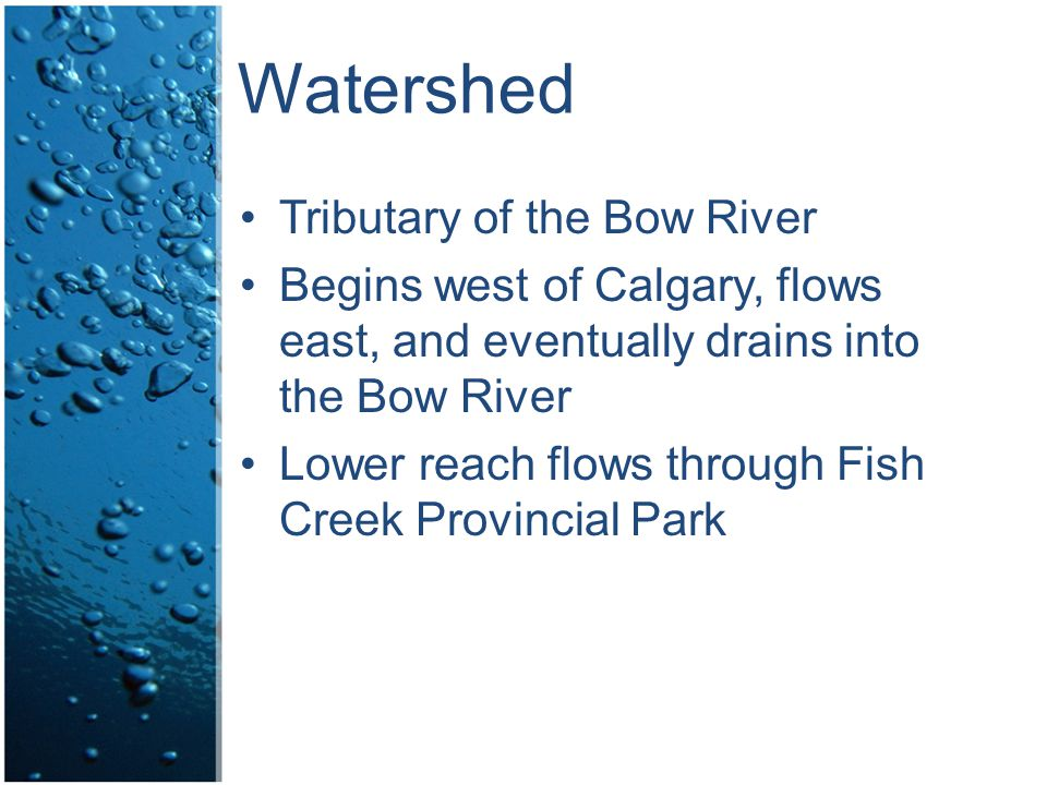 Watershed Tributary of the Bow River Begins west of Calgary, flows east, and eventually drains into the Bow River Lower reach flows through Fish Creek Provincial Park