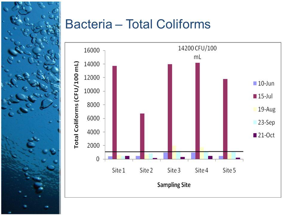 Bacteria – Total Coliforms
