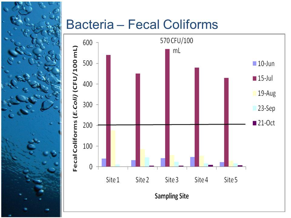 Bacteria – Fecal Coliforms