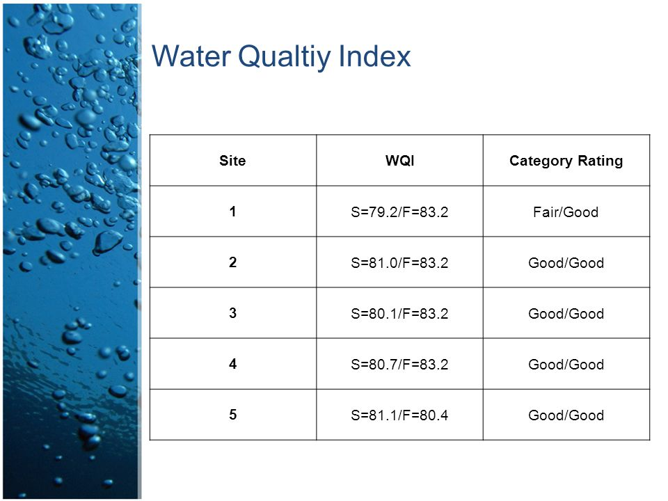 Water Qualtiy Index SiteWQICategory Rating 1S=79.2/F=83.2Fair/Good 2S=81.0/F=83.2Good/Good 3S=80.1/F=83.2Good/Good 4S=80.7/F=83.2Good/Good 5S=81.1/F=80.4Good/Good