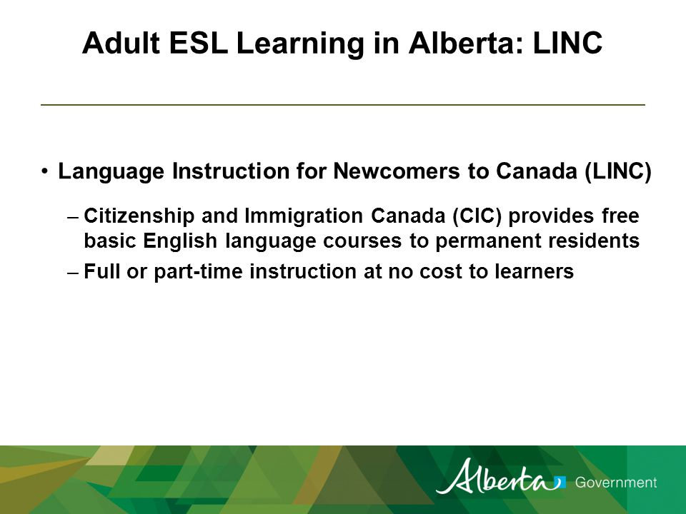 Additional ESL Learning in Alberta Drop-in ESL – Edmonton, Calgary and Taber Community Adult Learning Program Other community-based providers Post-secondary institutions Private providers Industry / workplace training providers On-line learning opportunities