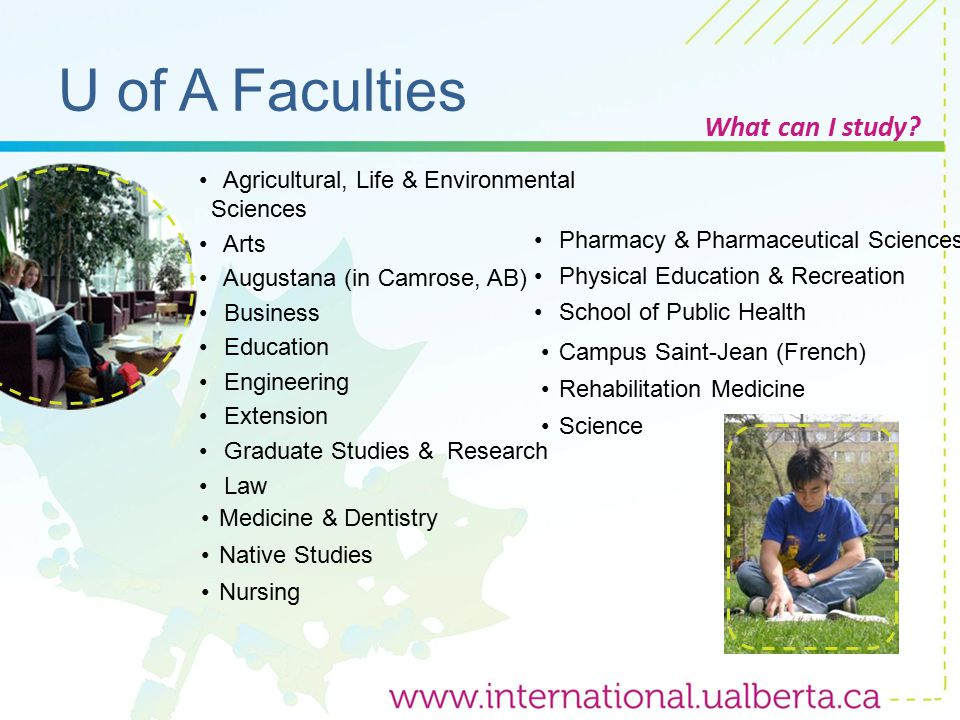 U of A Faculties What can I study.