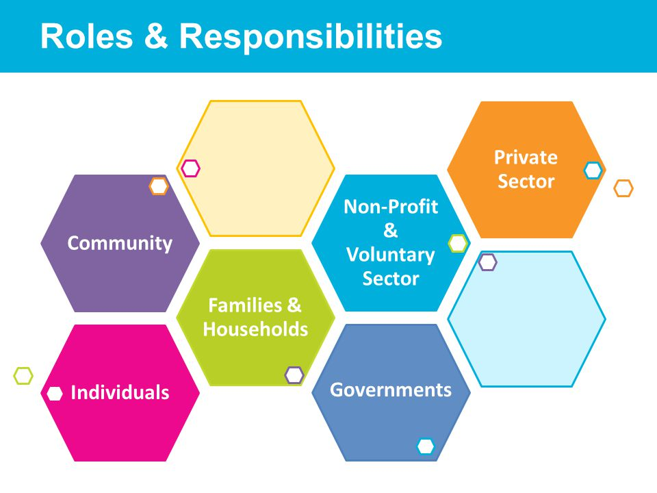 Roles & Responsibilities Governments