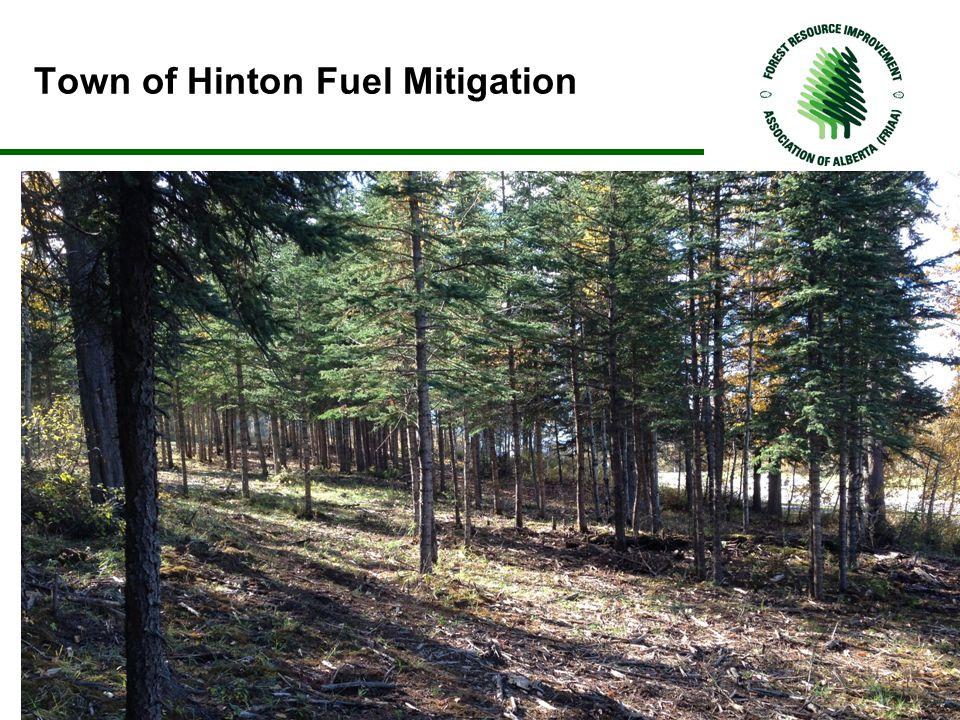 Town of Hinton Fuel Mitigation.