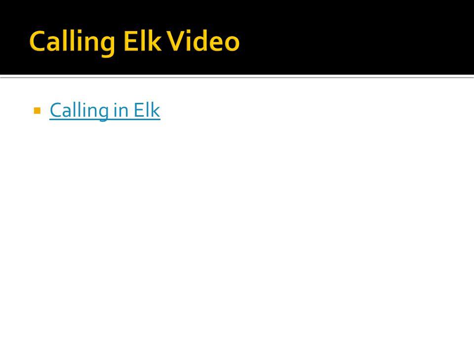  Calling in Elk Calling in Elk