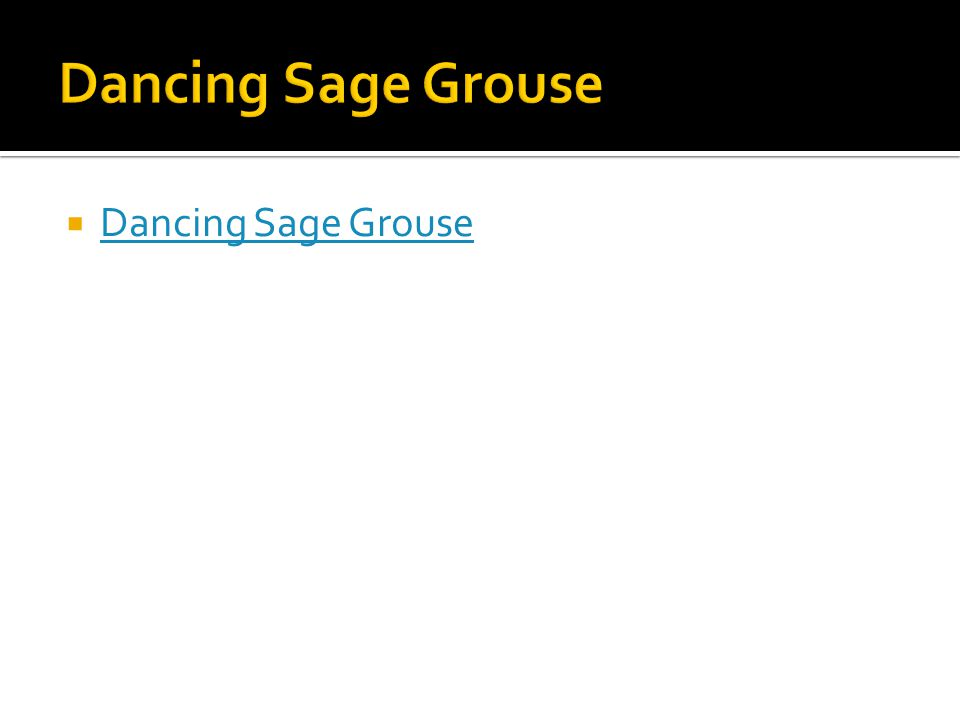  Dancing Sage Grouse Dancing Sage Grouse