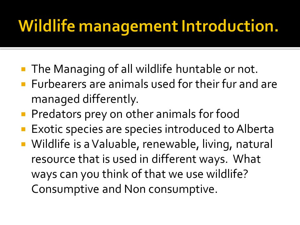  The Managing of all wildlife huntable or not.