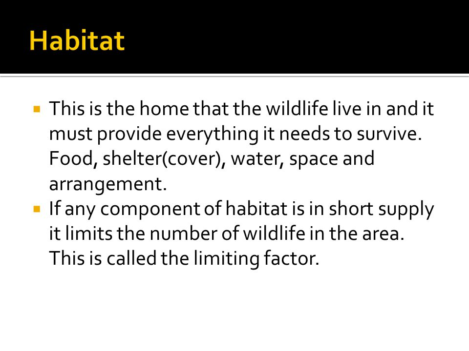  This is the home that the wildlife live in and it must provide everything it needs to survive.