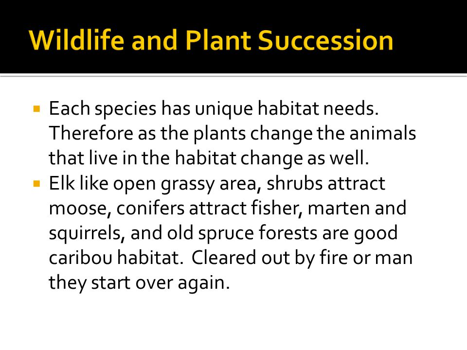  Each species has unique habitat needs.
