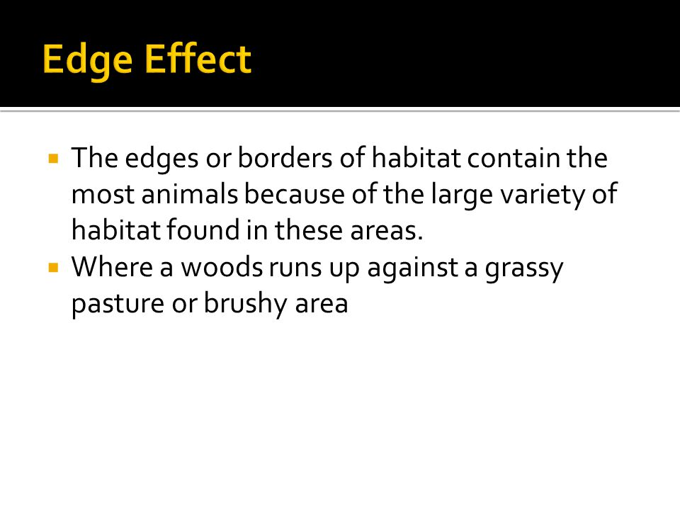  The edges or borders of habitat contain the most animals because of the large variety of habitat found in these areas.
