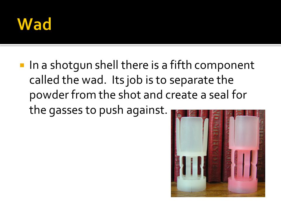  In a shotgun shell there is a fifth component called the wad.