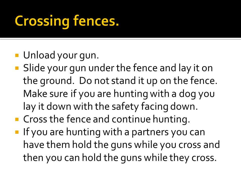  Unload your gun.  Slide your gun under the fence and lay it on the ground.