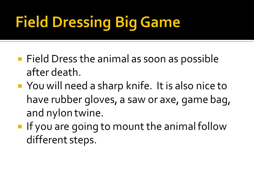  Field Dress the animal as soon as possible after death.