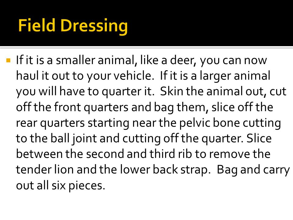  If it is a smaller animal, like a deer, you can now haul it out to your vehicle.