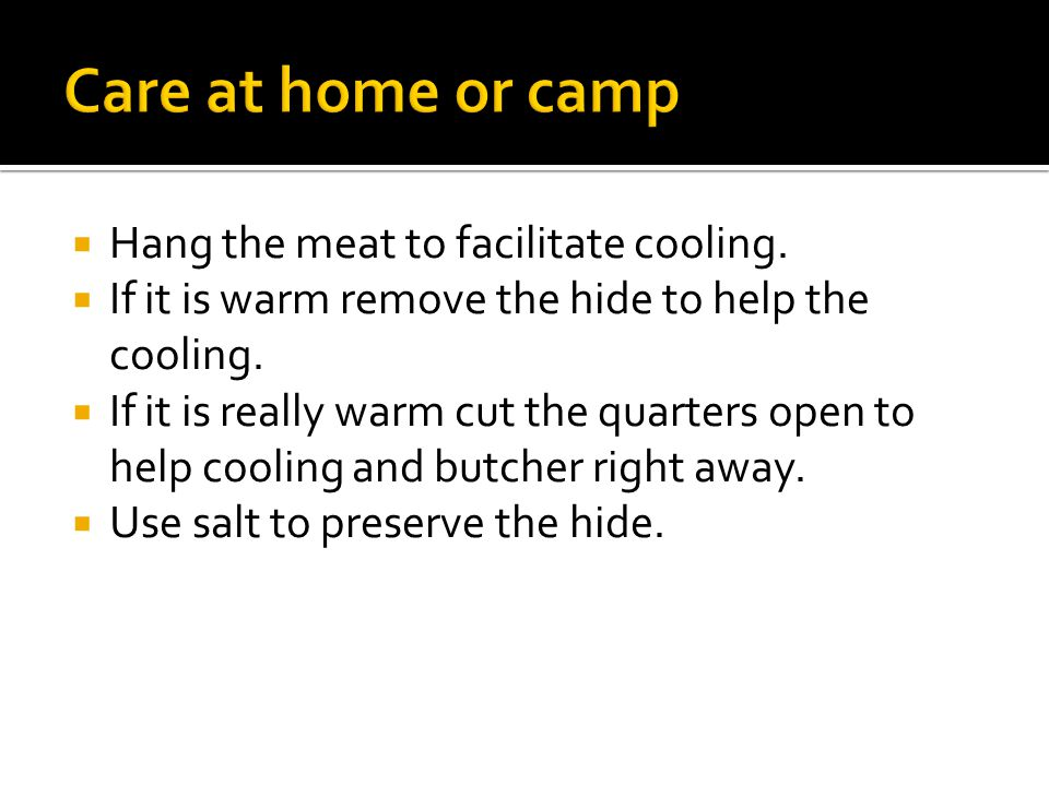  Hang the meat to facilitate cooling.  If it is warm remove the hide to help the cooling.