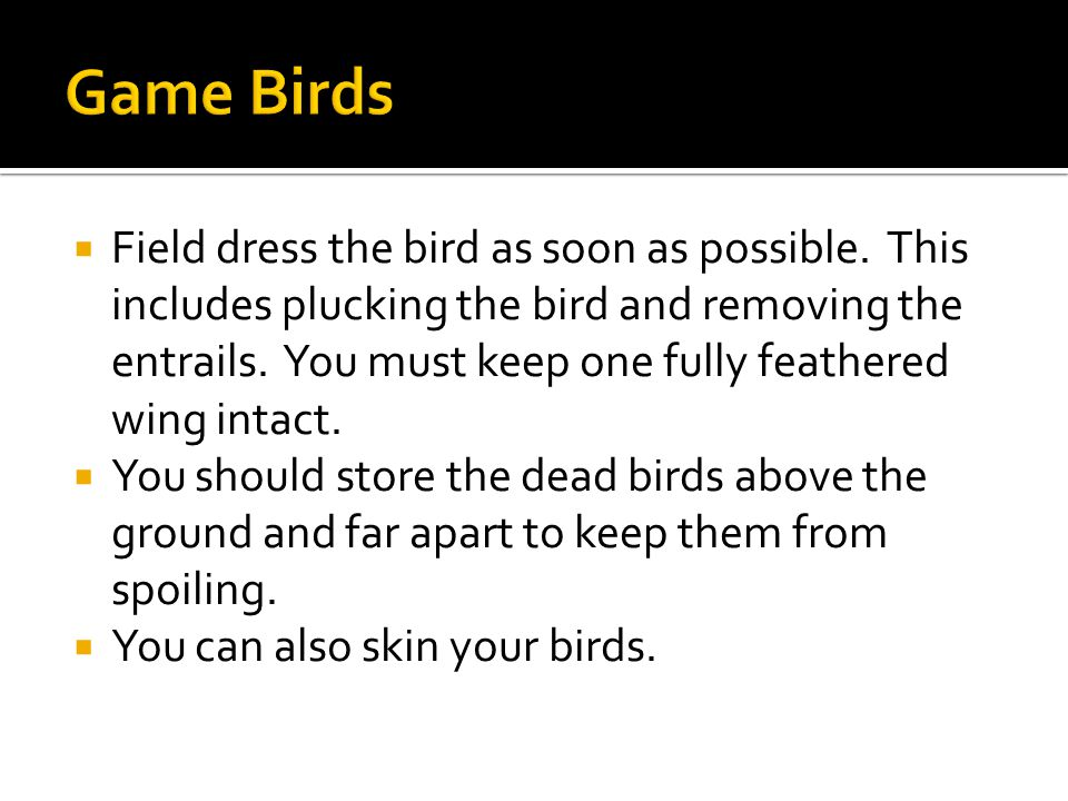  Field dress the bird as soon as possible.
