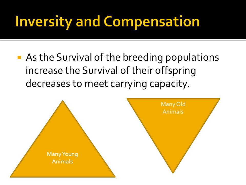  As the Survival of the breeding populations increase the Survival of their offspring decreases to meet carrying capacity.
