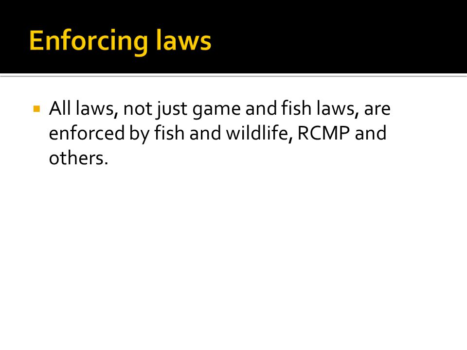  All laws, not just game and fish laws, are enforced by fish and wildlife, RCMP and others.