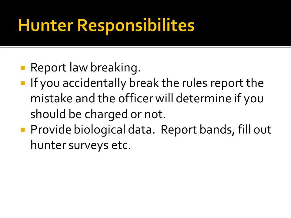  Report law breaking.