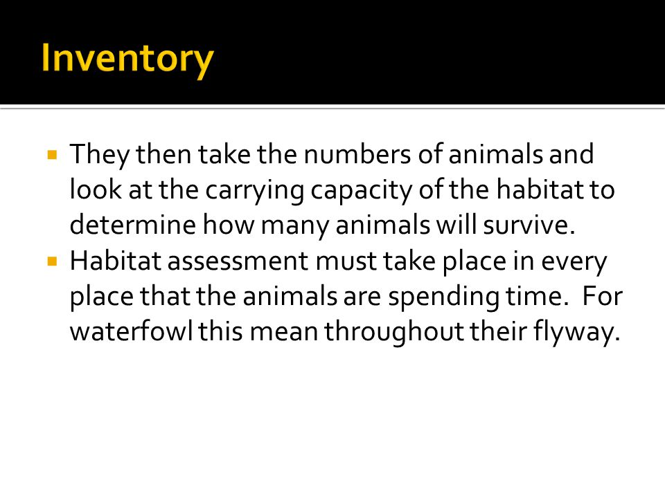  They then take the numbers of animals and look at the carrying capacity of the habitat to determine how many animals will survive.