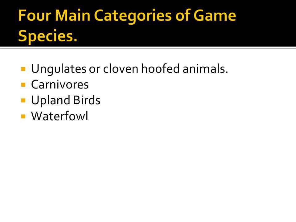  Ungulates or cloven hoofed animals.  Carnivores  Upland Birds  Waterfowl