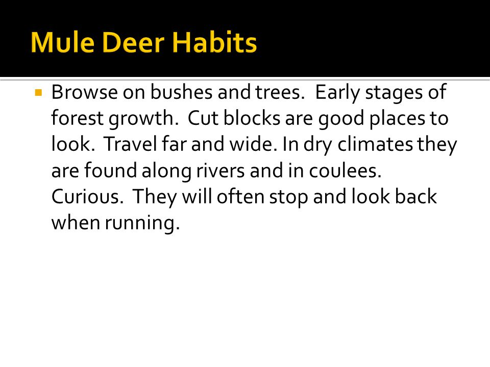  Browse on bushes and trees. Early stages of forest growth.