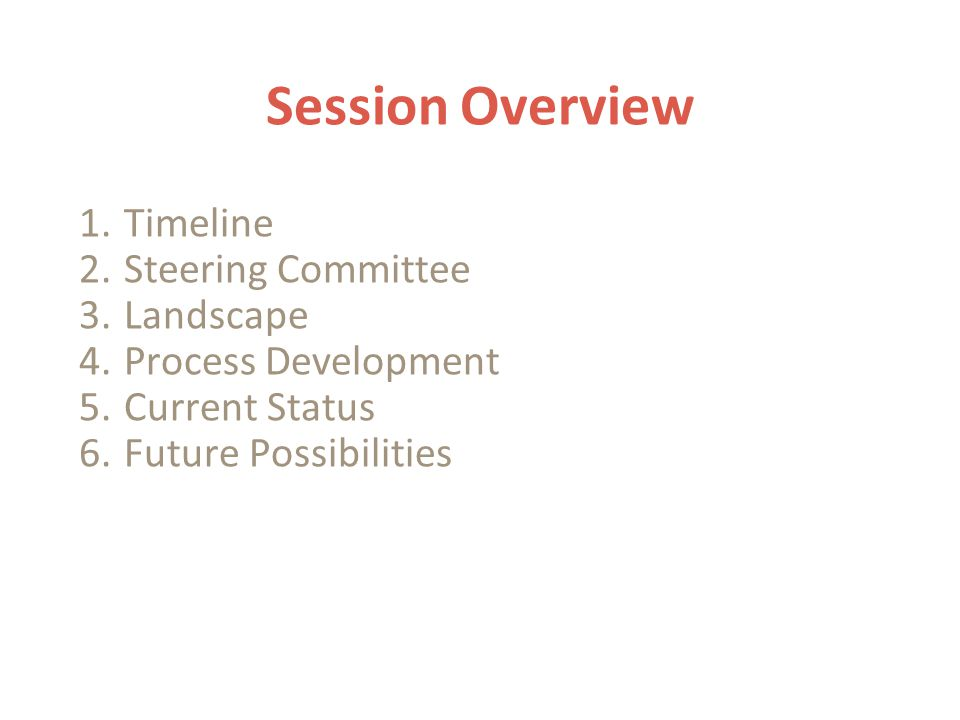 Session Overview 1.Timeline 2.Steering Committee 3.Landscape 4.Process Development 5.Current Status 6.Future Possibilities