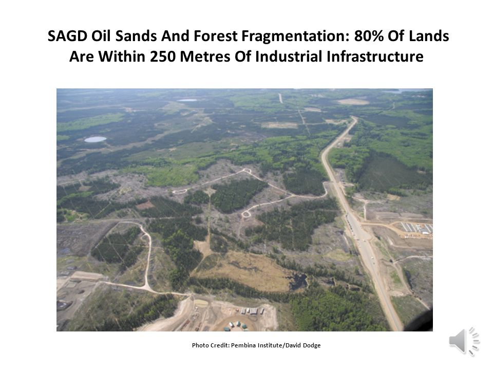 SAGD Oil Sands And Forest Fragmentation: 80% Of Lands Are Within 250 Metres Of Industrial Infrastructure Photo Credit: Pembina Institute/David Dodge