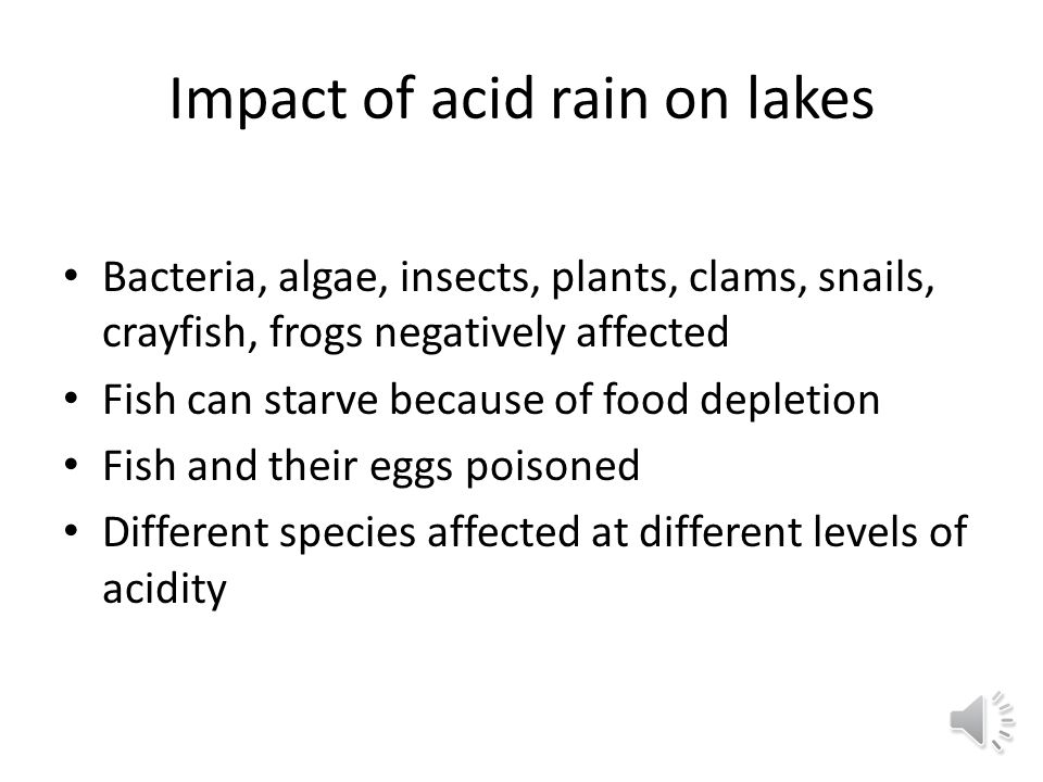 Impact of acid rain on lakes Bacteria, algae, insects, plants, clams, snails, crayfish, frogs negatively affected Fish can starve because of food depletion Fish and their eggs poisoned Different species affected at different levels of acidity