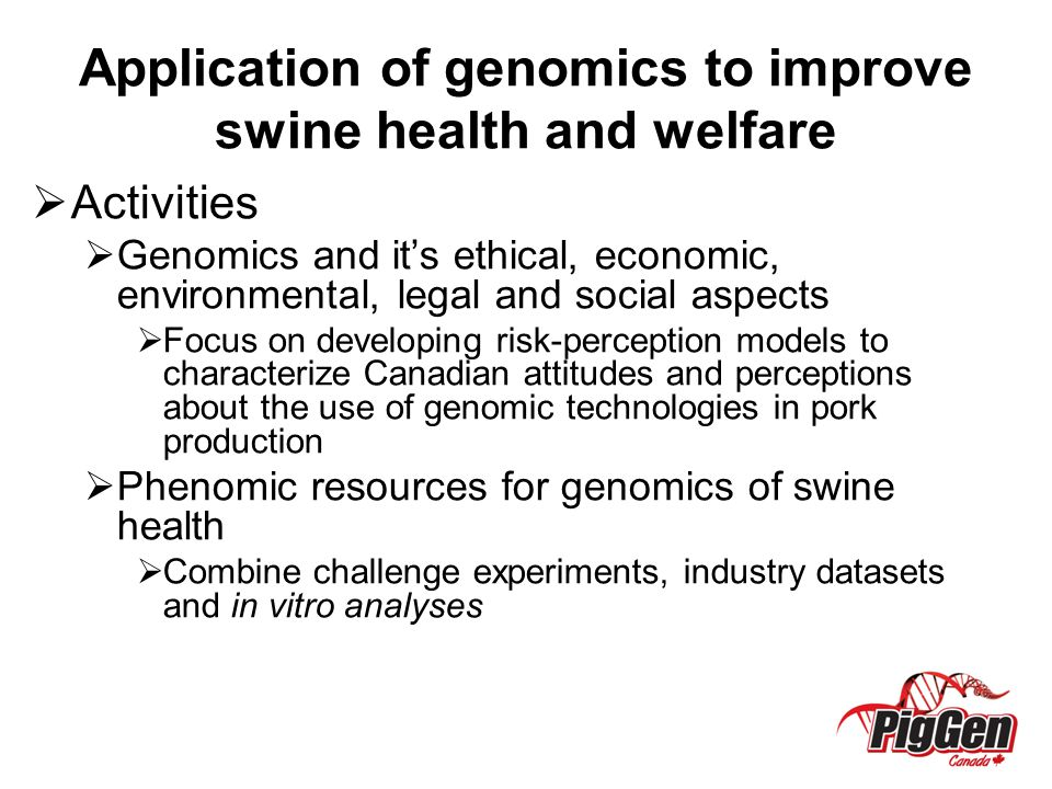 Application of genomics to improve swine health and welfare  Activities  Genomics and it's ethical, economic, environmental, legal and social aspects  Focus on developing risk-perception models to characterize Canadian attitudes and perceptions about the use of genomic technologies in pork production  Phenomic resources for genomics of swine health  Combine challenge experiments, industry datasets and in vitro analyses