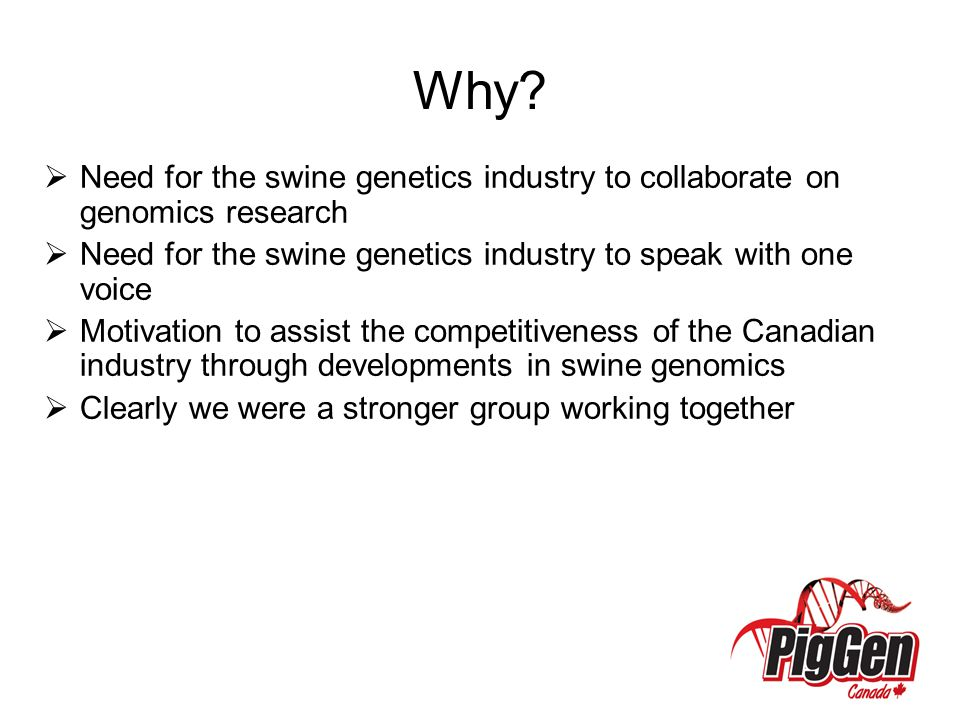 Why?  Need for the swine genetics industry to collaborate on genomics research  Need for the swine genetics industry to speak with one voice  Motiv