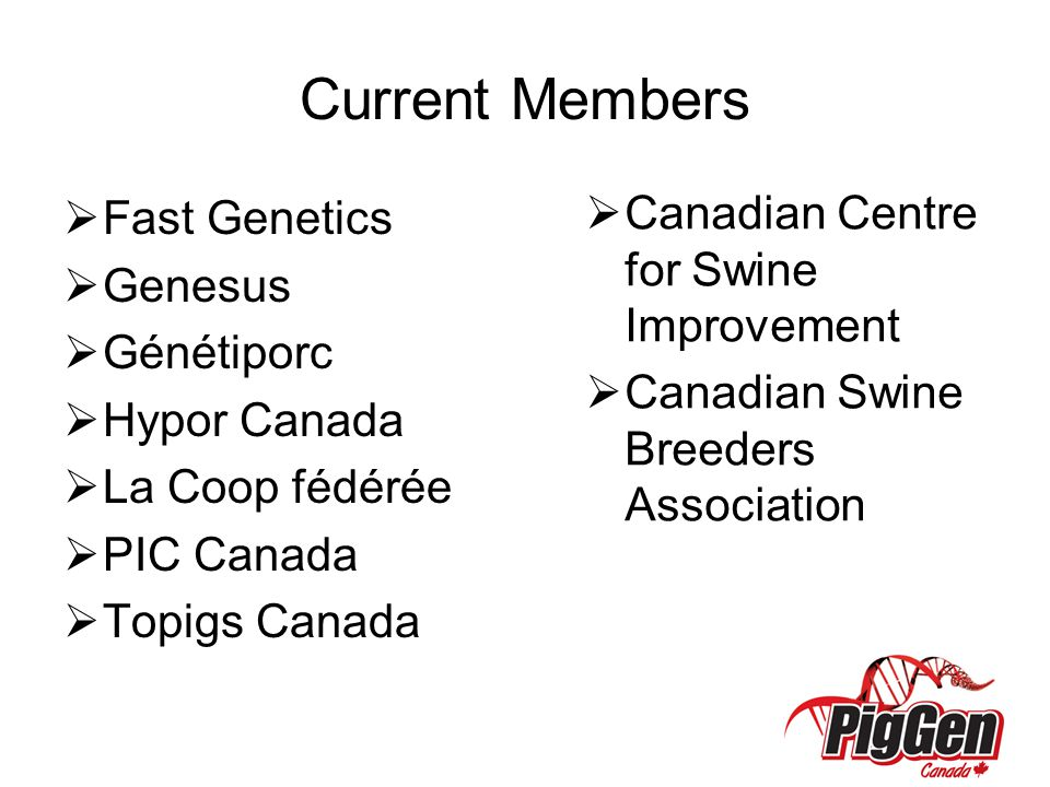 Current Members  Fast Genetics  Genesus  Génétiporc  Hypor Canada  La Coop fédérée  PIC Canada  Topigs Canada  Canadian Centre for Swine Improvement  Canadian Swine Breeders Association