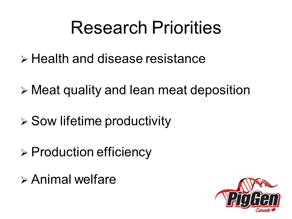 Research Priorities  Health and disease resistance  Meat quality and lean meat deposition  Sow lifetime productivity  Production efficiency  Animal welfare
