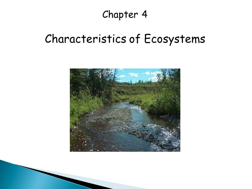 Chapter 4 Characteristics of Ecosystems