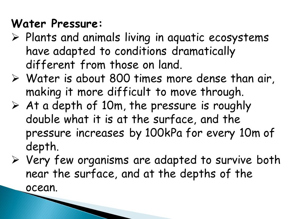 Water Pressure:  Plants and animals living in aquatic ecosystems have adapted to conditions dramatically different from those on land.  Water is abo
